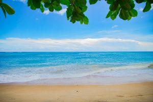 plage avec sable blanc